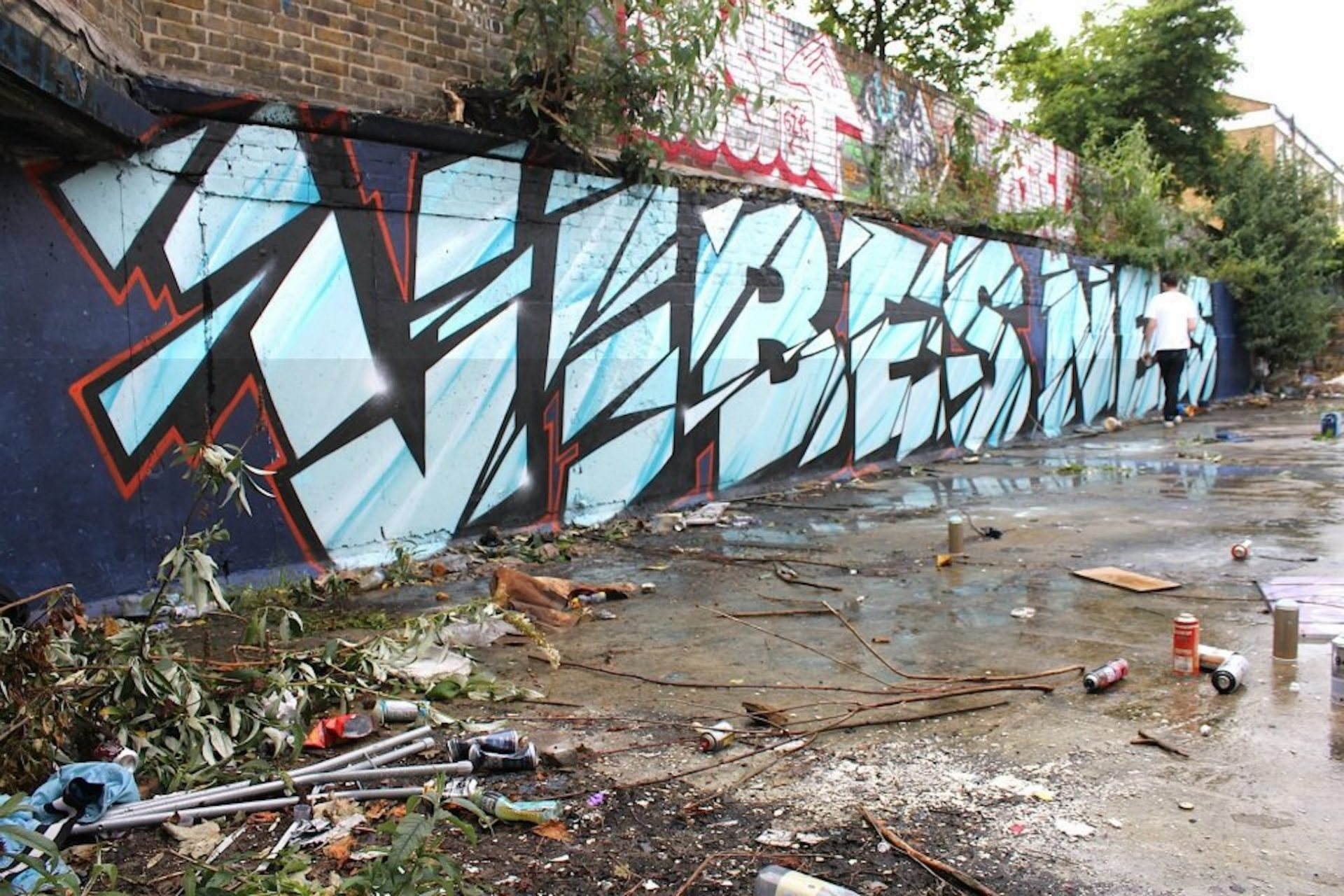 vibes neas bow 2014